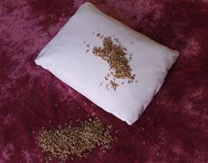 oreiller-vegetal