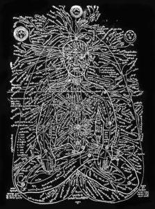 Les nadis, méridiens du corps humain dans les principes du Yoga ayurvédique